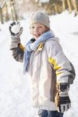 Boy About To Throw Snowball In Snowy Woodland — Stock Photo