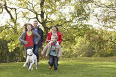 Young Family Outdoors Walking Through Park With Dog — Stock Photo