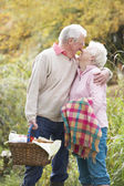 Romantic Senior Couple Outdoors With Picnic Basket By Autumn Woo — Zdjęcie stockowe