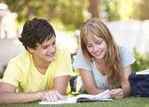 Parkta okuyan genç öğrenci çift — Stok fotoğraf