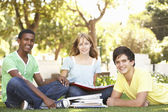 Group Of Teenage Students Chatting Together In Park — Stock Photo