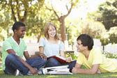 Grup genç öğrenci parkta birlikte sohbet — Stok fotoğraf