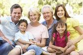 Retrato de grupo extendido de familia disfrutando un día en el parque — Foto de Stock