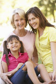 Grandmother With Mother And Daughter In Park — Stockfoto