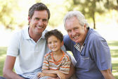 Grandfather With Father And Son In Park — Stock Photo
