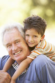 Grandfather Giving Grandson Ride On Back In Park — Stock Photo