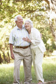 Senior Couple — Foto Stock