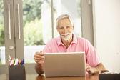 シニアの人が自宅でラップトップを使用して — ストック写真