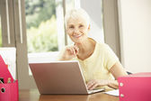 Senior Woman Using Laptop At Home — Stock fotografie