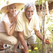 Senior Couple Relaxing In Garden — Stock Photo