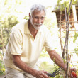 Senior Man Relaxing In Garden - Stock Photo