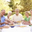 Extended Family Enjoying Meal In Garden — Stock Photo #4840223