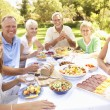 Extended Family Enjoying Meal In Garden — Foto Stock