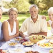 Adult Son And Daughter Enjoying Meal In Garden With Senior Paren — Stock Photo #4840226