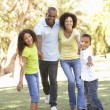 portrait of happy family walking im park — Stockfoto