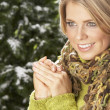 Fashionable Woman Wearing Knitwear And Scarf In Studio In Front Of Christma - Stock Photo