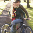 Royalty-Free Stock Photo: Portrait Of Young Couple With Cycle In Autumn Park