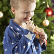 Boy eating cokie in front of christmas tree — ストック写真