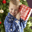 boy with a giftbox in front of christmas tree — Stock Photo