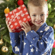 Boy with a giftbox in front of christmas tree — Stockfoto