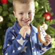 图库照片: Boy eating cokie in front of christmas tree