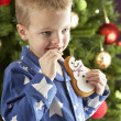 Boy eating cokie in front of christmas tree — Stok fotoğraf