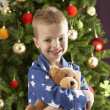 Boy with a teddy-bear in front of christmas tree — Stockfoto