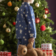Boy with a giftbox in front of christmas tree - Stockfoto