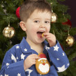 Young Boy Eating Cookie In Front Of Christmas Tree — Foto de Stock