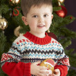 Young Boy Eating Cookie In Front Of Christmas Tree — Foto Stock