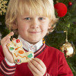 Young Boy Eating Cookie In Front Of Christmas Tree — 图库照片