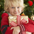 Young Boy Holding Gift In Front Of Christmas Tree — Stock Photo #4841010