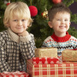 Two Young Boys With Presents In Front Of Christmas Tree — Stock Photo