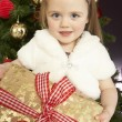 Young Girl Holding Christmas Present In Front Of Christmas Tree - Stock fotografie