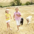 Children With Dogs Running Through Summer Harvested Field — Stock Photo