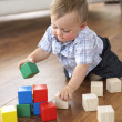 Young Boy Playing With Coloured Blocks At Home — Stock Photo