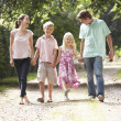 Family Walking In Countryside Together — Stock Photo