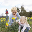 Stock Photo: Family On Easter Egg Hunt In Daffodil Field