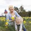 Family On Easter Egg Hunt In Daffodil Field - Stok fotoğraf