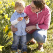 Mother And Son On Easter Egg Hunt In Daffodil Field — Stock Photo