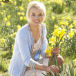 Young Woman Picking Spring Daffodils — Stock Photo