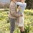 Stock Photo: Romantic Couple Walking Amongst Spring Daffodils