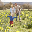 Royalty-Free Stock Photo: Young Family Walking Amongst Spring Daffodils