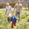 Young Family Walking Amongst Spring Daffodils — Stock Photo #4841855