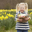 Young Girl Holding Basket Of Decorated Eggs In Daffodil Field - Stock Photo