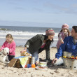 Family Having Barbeque On Winter Beach - Stock Photo