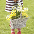 Royalty-Free Stock Photo: Detail Of Girl Holding Basket Of Daffodils In Garden