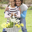 Stock Photo: Mother And Daughter Holding Basket Of Daffodils In Garden