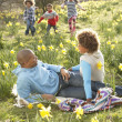 Family Relaxing In Field Of Spring Daffodils - Stock Photo