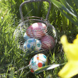 Easter Eggs Hidden For Hunt In Daffodil Field — Stock Photo #4842223